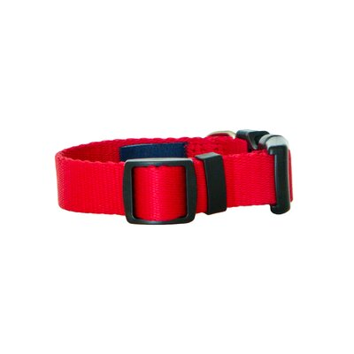 "Wagberry Classic 3/4"" Adjustable Dog Collar"
