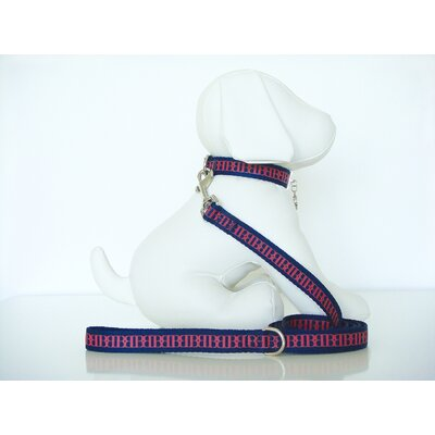 Wagberry Beyond Basics Self Dog Leash