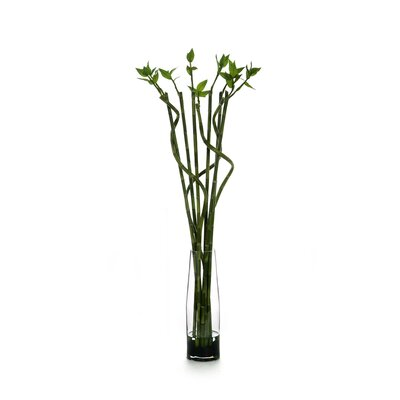 Distinctive Designs Silk Lucky Bamboo in Glass Vase