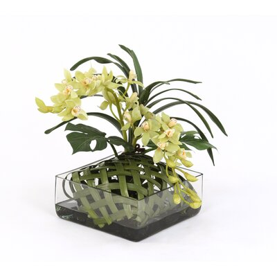 Distinctive Designs Silk Orchids in Square Glass Tray