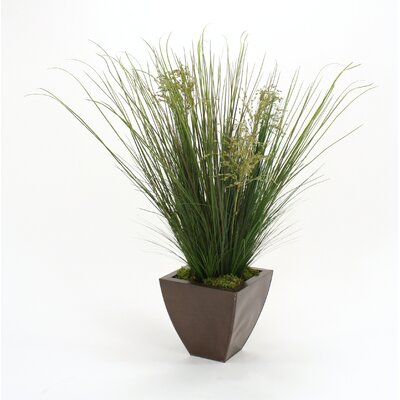 Distinctive Designs Mixed Silk Grasses in Square Planter