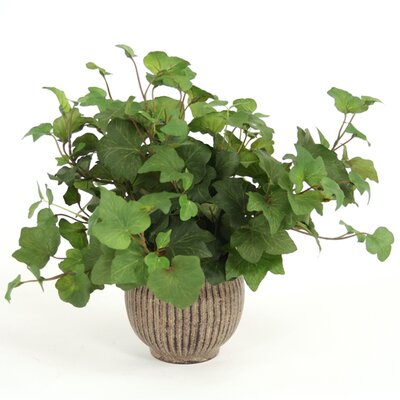 Distinctive Designs Silk Hedera Ivy in Small Metal Planter (Set of 3)