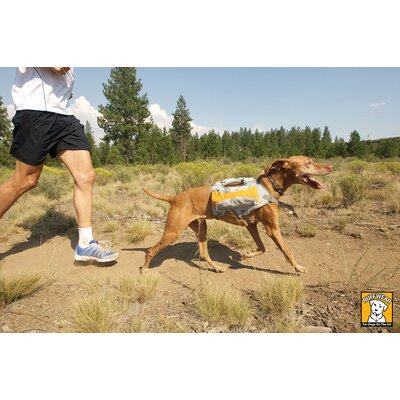 SingleTrack Pack™ Dog Backpack