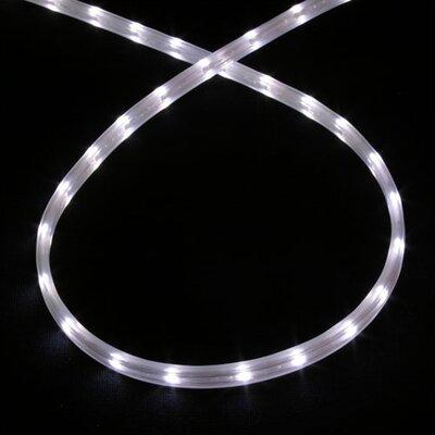 Cove Lighting Wayfair