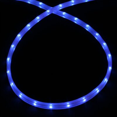 American Lighting LLC Mini Rope Light in Blue