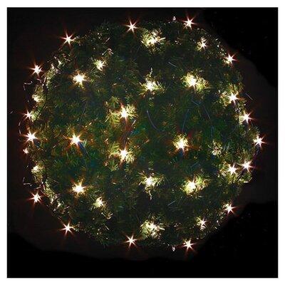 Holiday Lighting Wayfair