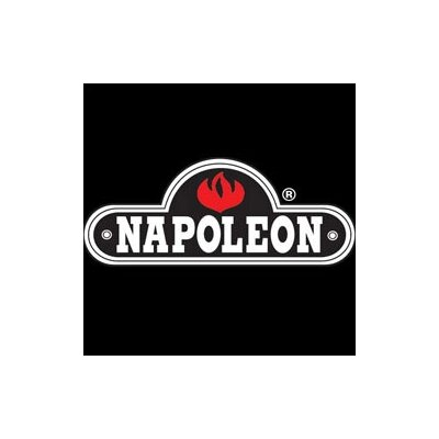 Napoleon Arched Fireplace Screen Kit