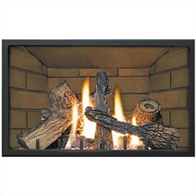 Napoleon Decorative Porcelain Fireplace Insert