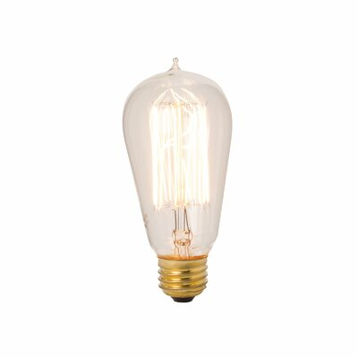 Lazy Susan USA Exposed Filament Bulb