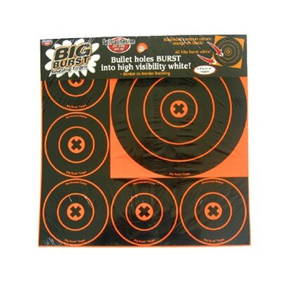 "Birchwood Casey 4"" and 8"" Round Big Burst Target"