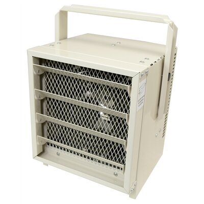 NewAir 5,000 BTU Fan Forced Wall/Ceiling Electric Garage Space Heater
