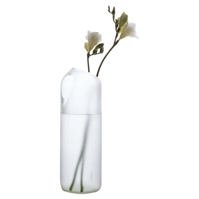 tranSglass Two Hole Vase