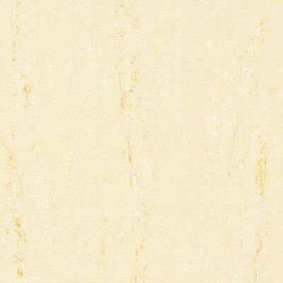 "Kertiles Amazonia 24"" x 24"" Floor and Wall Tile in Marfil"