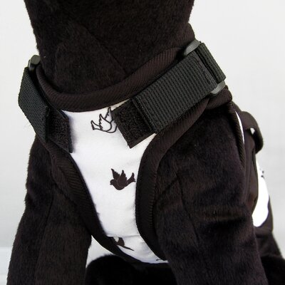 26 Bars & A Band Avant Garde Freebird Dog Harness