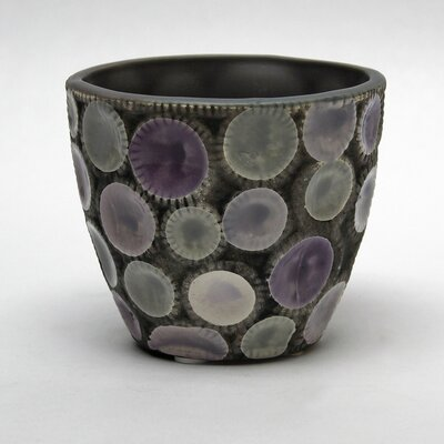 Vita V Home Noshi Cup