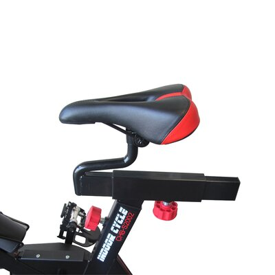 Velocity Fitness Indoor Cycling Bike Amp Reviews Wayfair