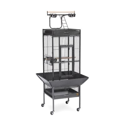 Signature Series Select Wrought Iron Cage - 18x18x57