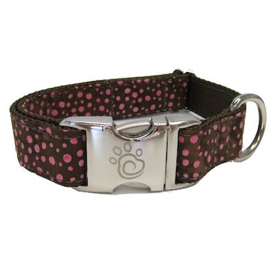 Robertson Blvd Dog Collar