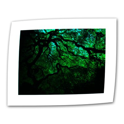 "Art Wall John Black ""Japanese Dark Tree"" Canvas Wall Art"