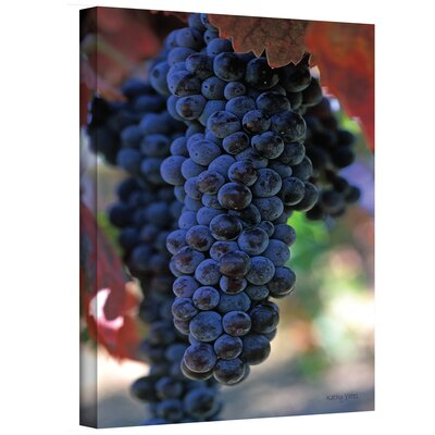 ''On The Vine'' by Kathy Yates Photographic Print on Canvas