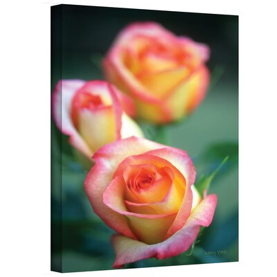 Art Wall Kathy Yates ''Rose Trio'' Canvas Art