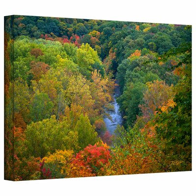 David Liam Kyle 'Autumn Stream' Gallery-Wrapped Canvas Wall Art