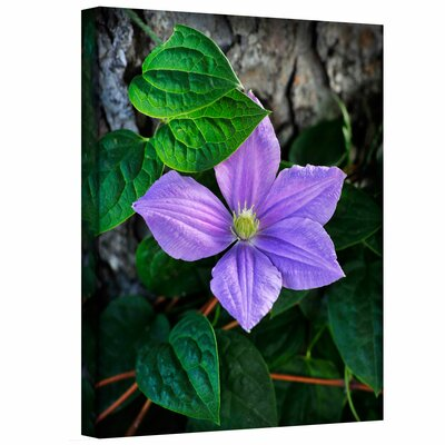 David Liam Kyle 'Flower' Gallery-Wrapped Canvas Wall Art
