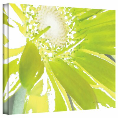 Art Wall Herb Dickinson 'Gerber Time IV' Unwrapped Canvas Wall Art