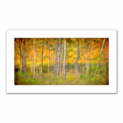 David Liam Kyle 'Into the Wood' Unwrapped Canvas Wall Art