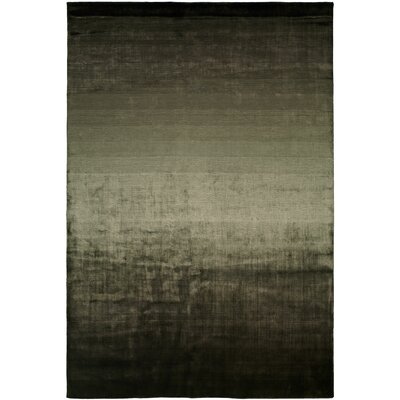 Wildon Home ® Nova Earth and Shadow Rug