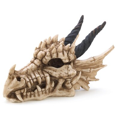 Dragon Bones Keepsake Box