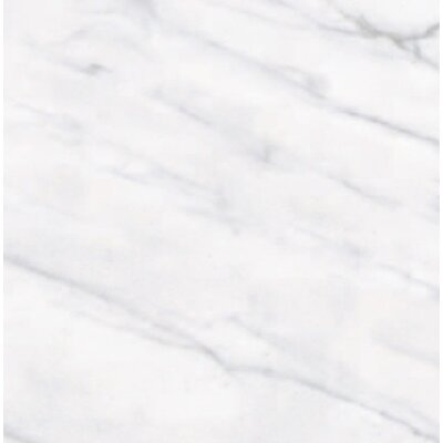 Calacatta High Definition 12 X 12 Porcelain Matte Tile In White