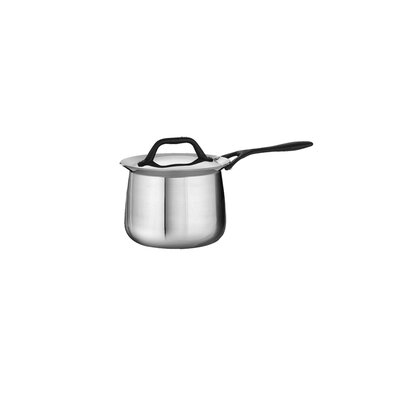Limited Edition Butterfly Stainless Steel 2-qt. Deep Saucepan with Lid