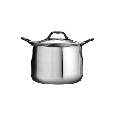 Limited Edition Butterfly Stainless Steel Stock Pot with Lid