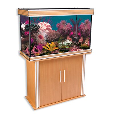 Penn Plax Nautilus II Aquarium with Silver Trim and Stand