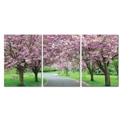 Baxton Studio Spring in Bloom Mounted 3 Piece Photographic Print on Canvas Set