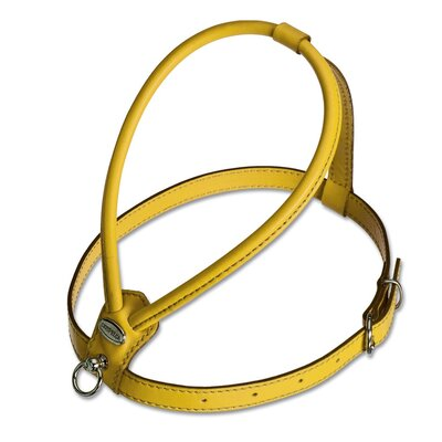 PetEgo Fashion Soft Leather Dog Harness