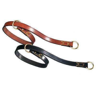 PetEgo Classic Leather Choke Dog Collar
