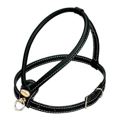 PetEgo Fashion Leather Dog Harness in Black