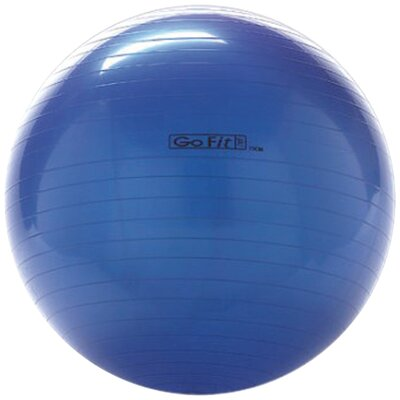 GoFit Exercise Ball