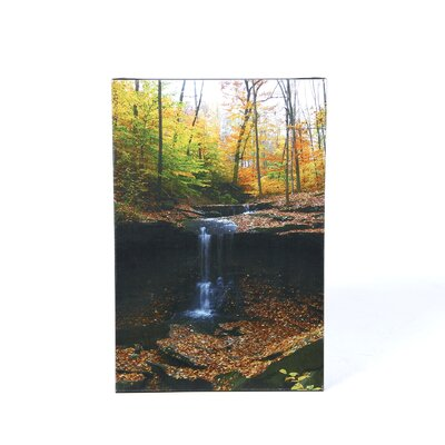 "<strong>Trademark Fine Art</strong> Blue Hen Falls by Kurt Shaffer, Canvas Art - 24"" x 16"""
