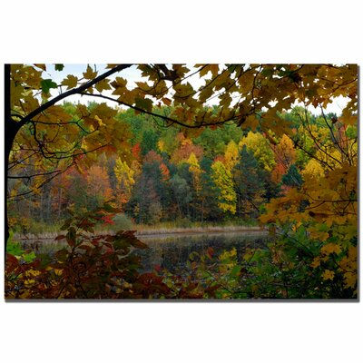 "Trademark Fine Art Full Color Fall by Kurt Shaffer, Canvas Art - 16"" x 24"""
