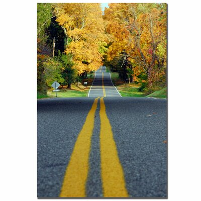 Trademark Fine Art 'Major Road' by Kurt Shaffer Photographic Print on Canvas
