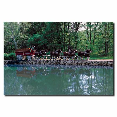Trademark Fine Art Clydesdales On Green Pond Canvas Art