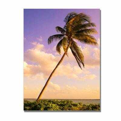 Trademark Fine Art 'Lone Palm' Canvas Art