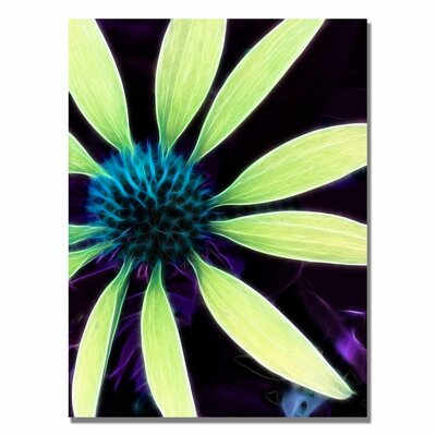 'Lime Green Coneflower' Canvas Art