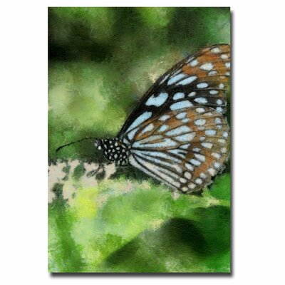 'Butterfly in Blue' Canvas Art