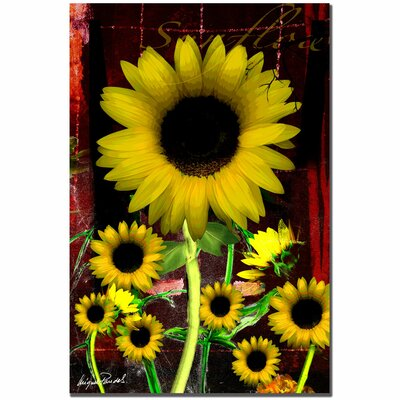 Trademark Fine Art 'Sunflower III' Canvas Art