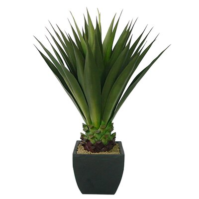 "Laura Ashley Home 43"" Realistic Giant Aloe Plant in Contemporary Planter"