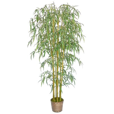 Laura Ashley Home 6' Silk Bamboo Tree with Wicker Basket Planter